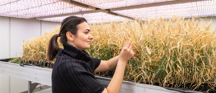 Agricultural student with laptop during field internship